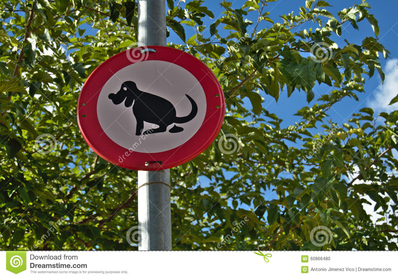 Dog Shit Stock Photo Cartoondealer Com 53706666