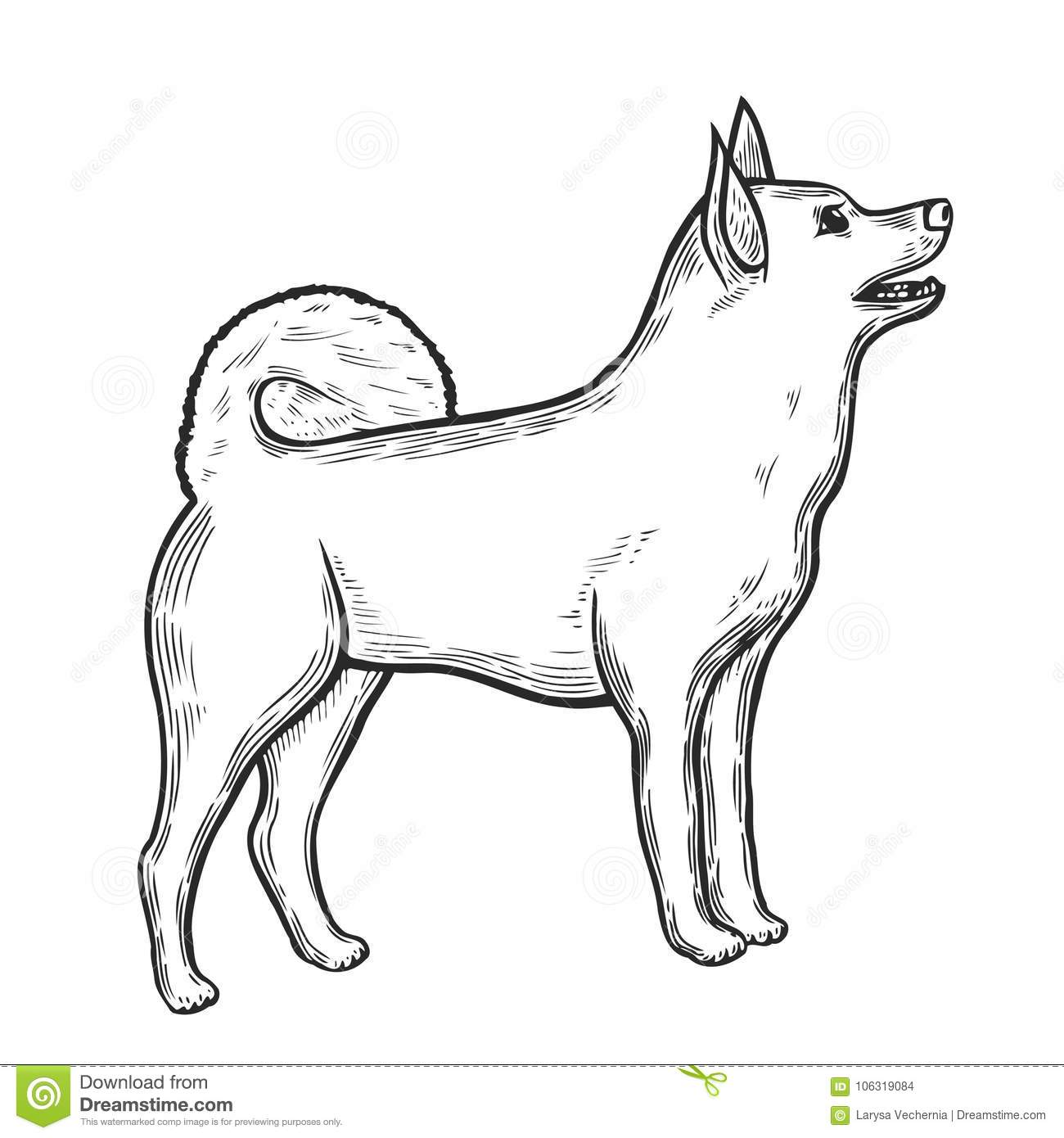 Dog In Sketch Style Stock Vector Illustration Of Hand 106319084