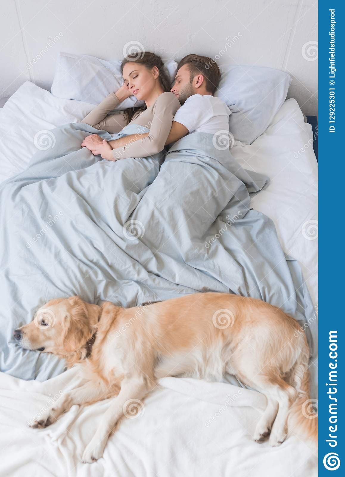 Dog Sleeping On Bed With Couple Stock Image Image Of Hugging