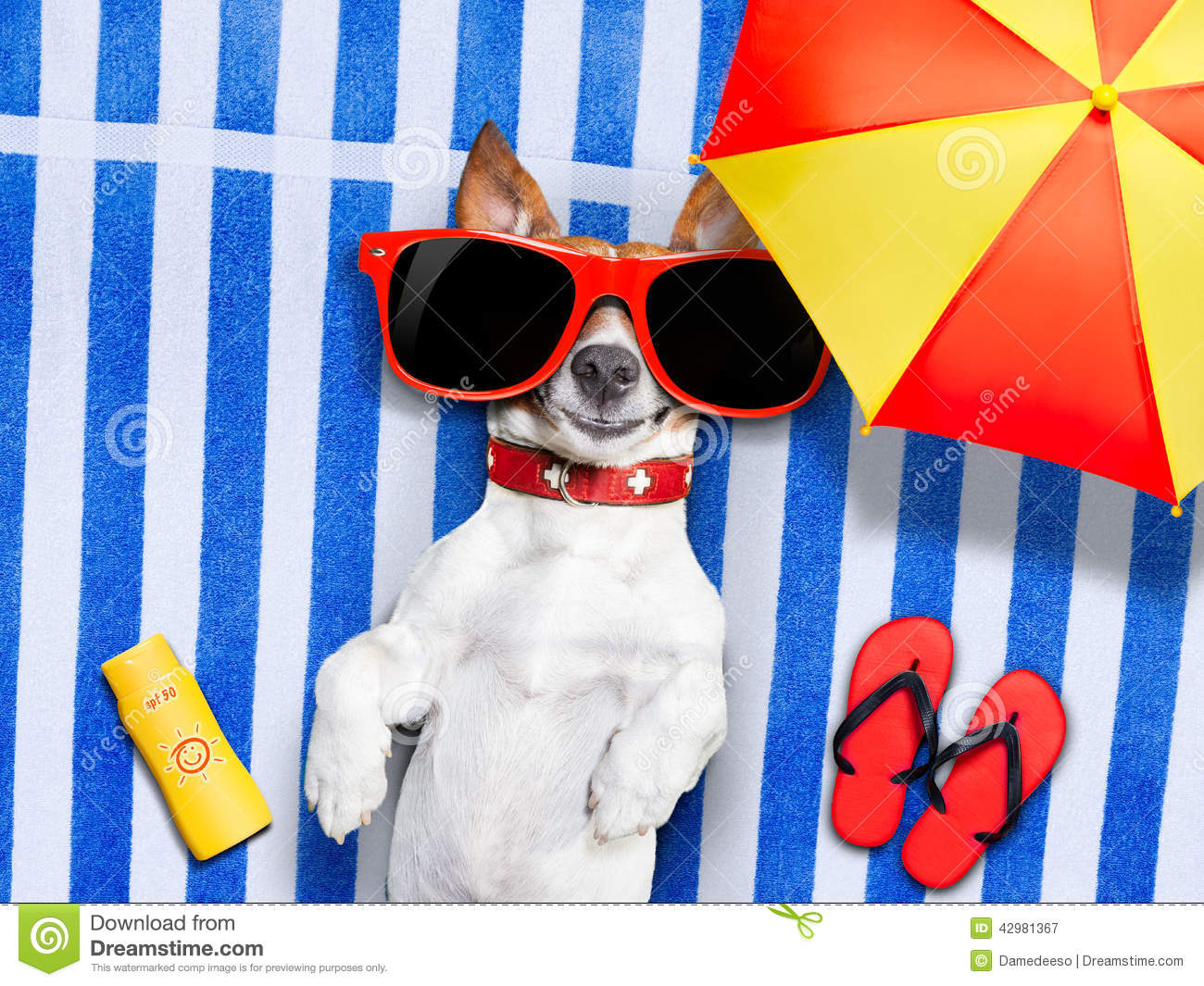 ... fancy towel under the umbrella and with red sunglasses on sun tanning