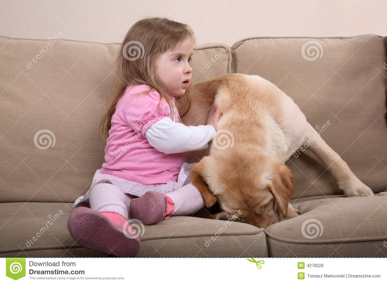 Dog Therapy and Girl