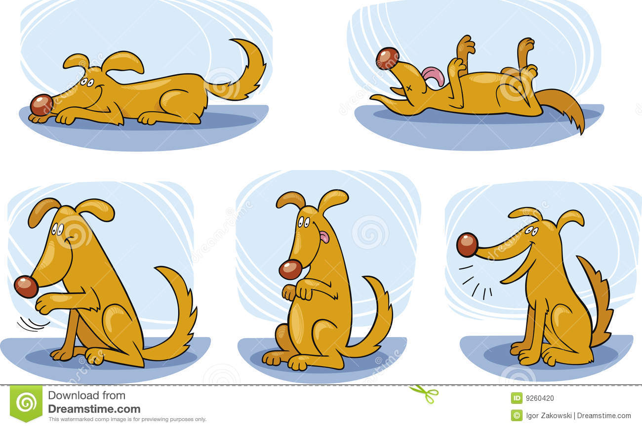 Dog Tricks Stock Photo - Image: 9260420