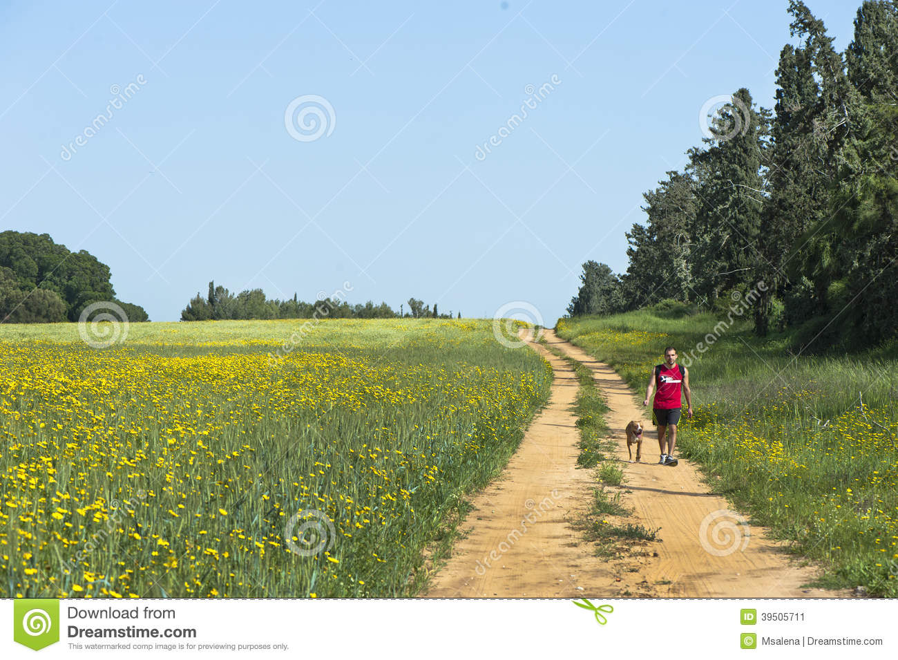 Dog-walk in the Countryside