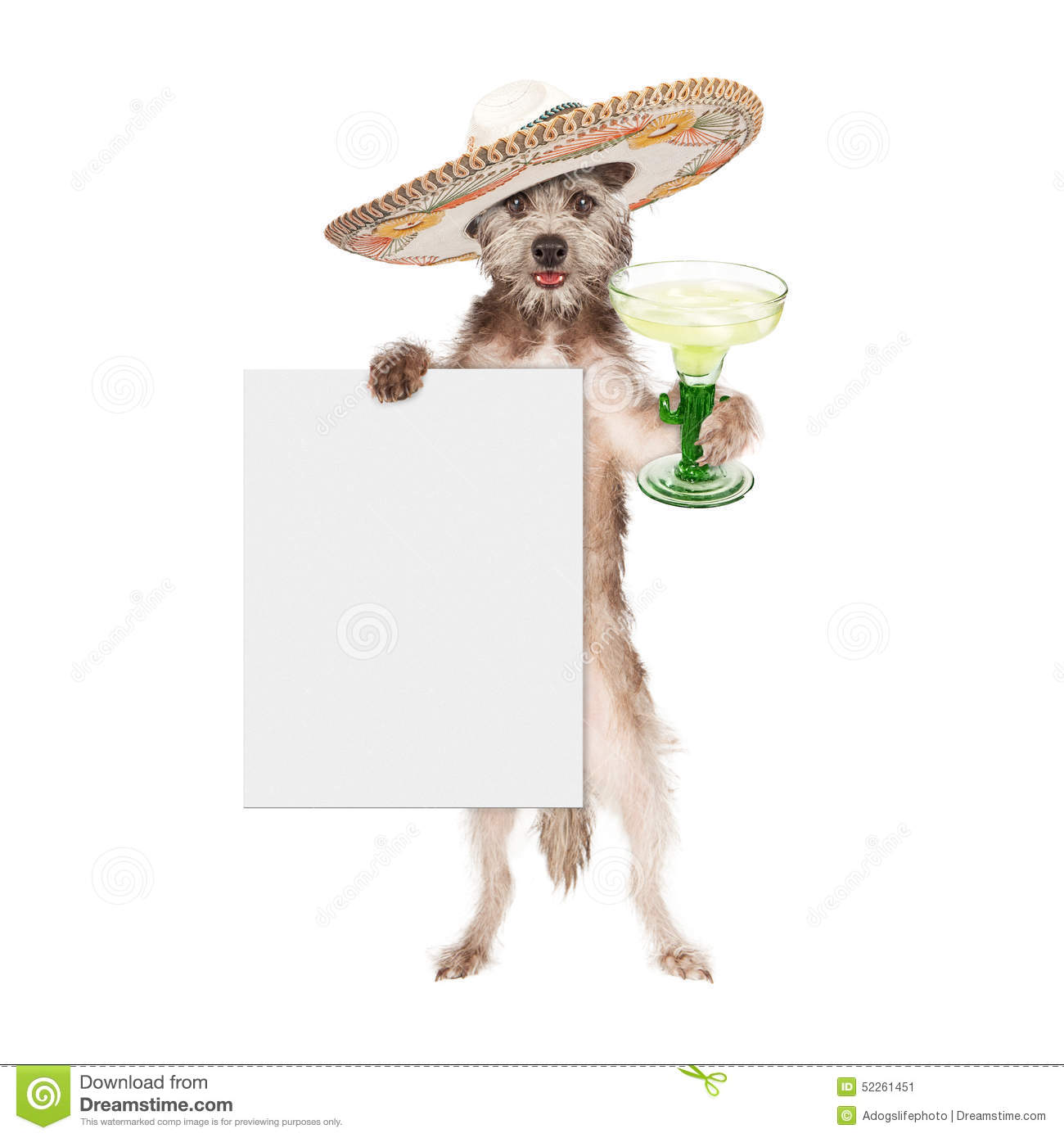 how to wear a sombrero correctly
