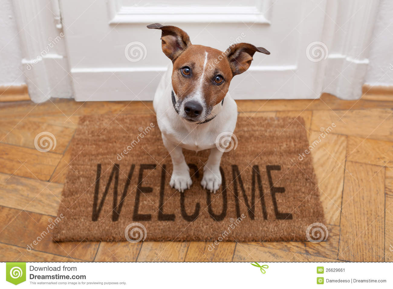 Welcome Stock Photos 89254 Images Printed Circuit Board Pictures Free Use Image 042054 By Freefoto Dog Home On Brown Mat