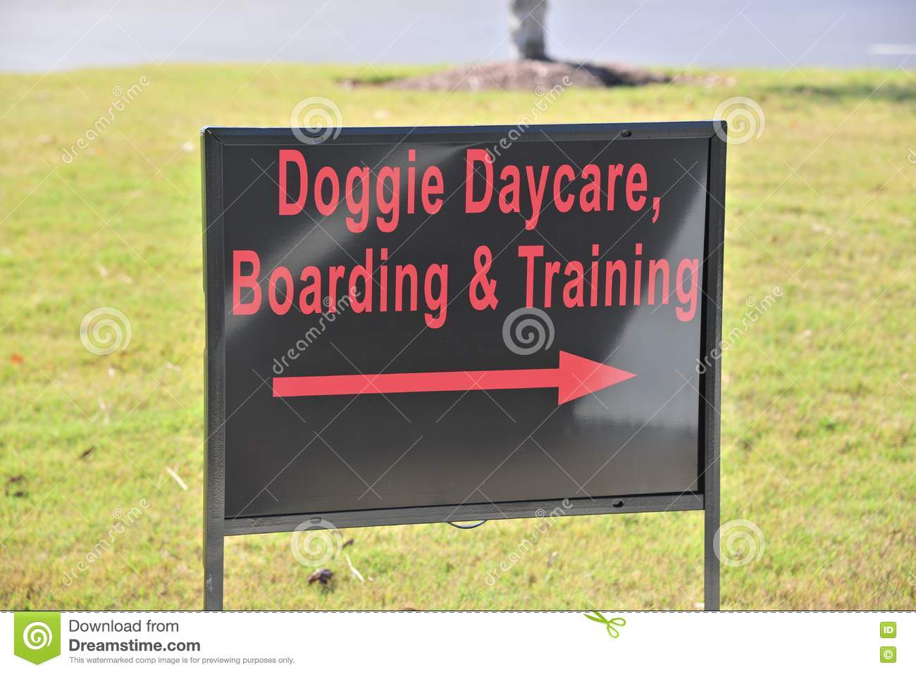 doggie daycare sign stock photo image of pets daycare 79705524