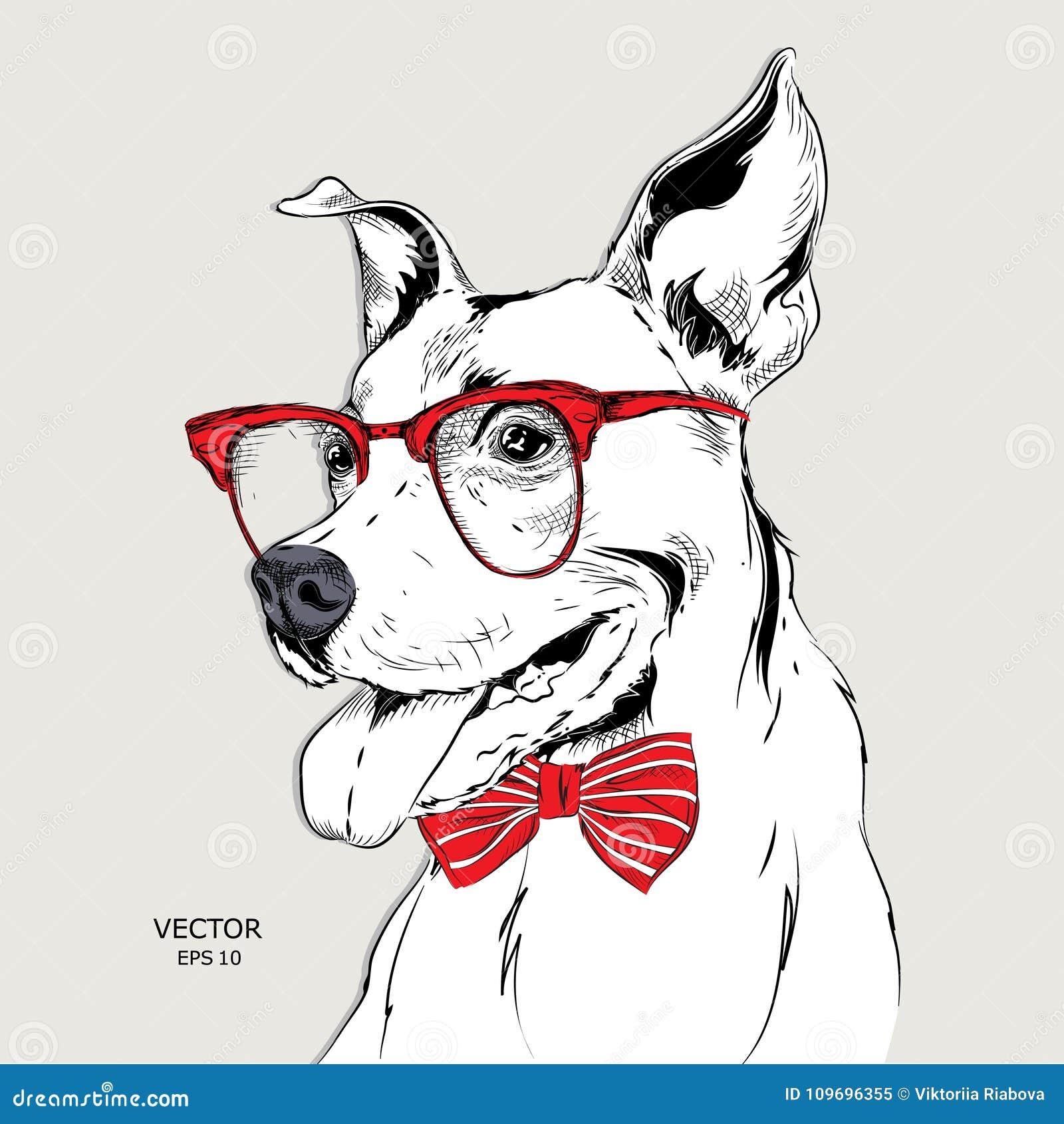 Dogo del retrato de la imagen en el pañuelo y con los vidrios Ilustración del vector
