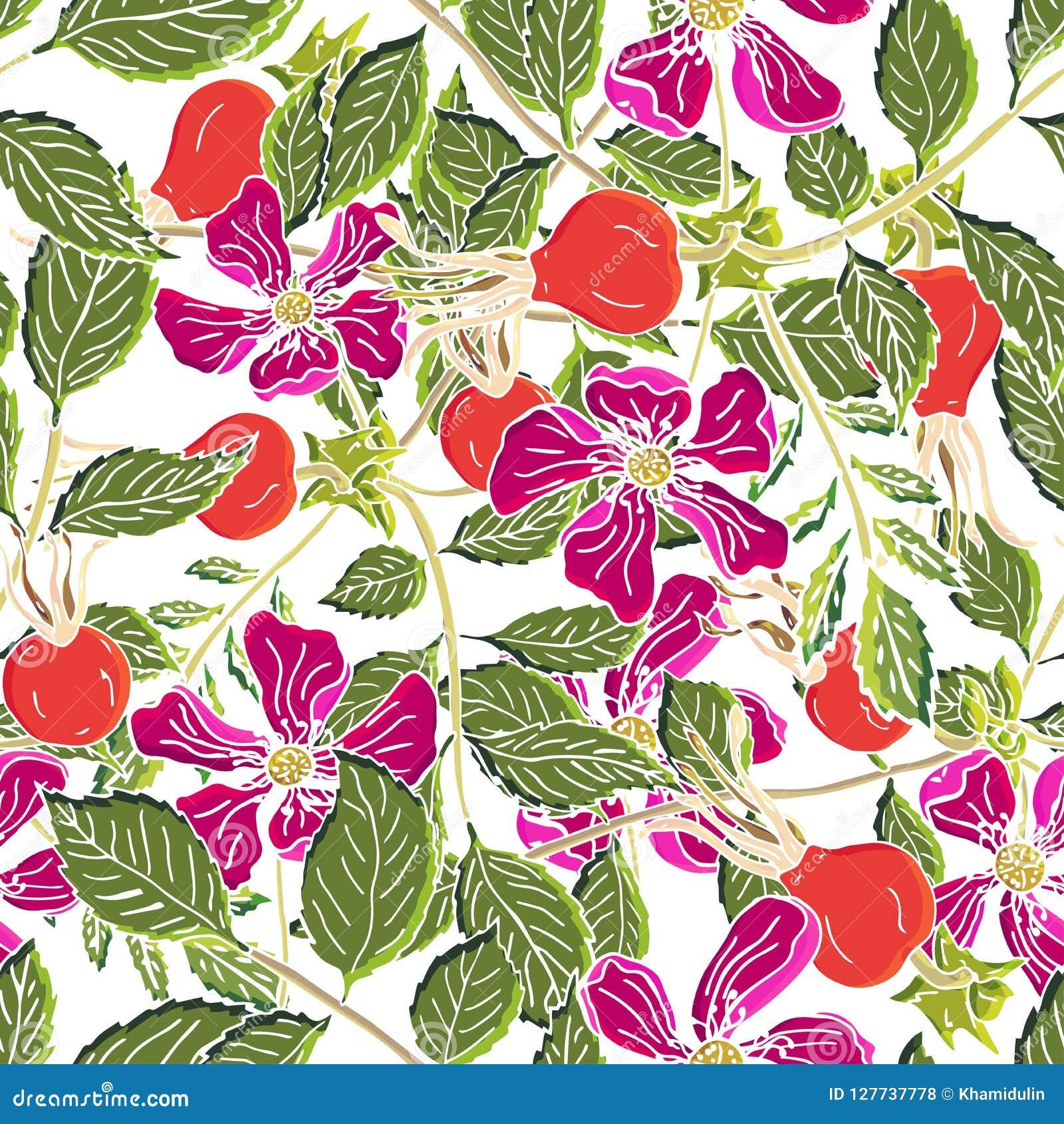 Dogrose莓果无缝的样式 与绿色叶子的传染媒介背景狂放的玫瑰色果子设计的标记糖浆,茶