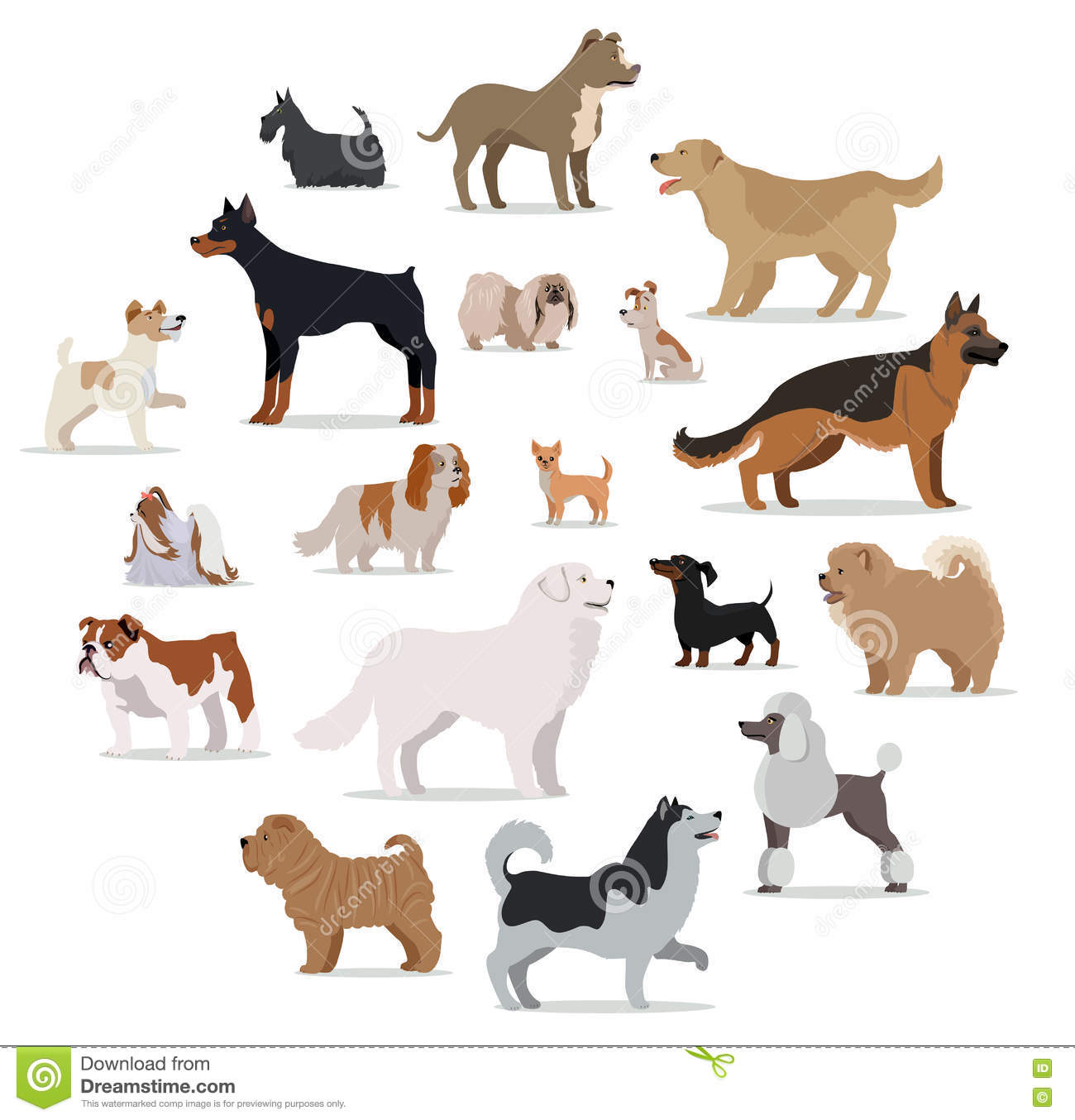 Dog Breeds With Small Heads