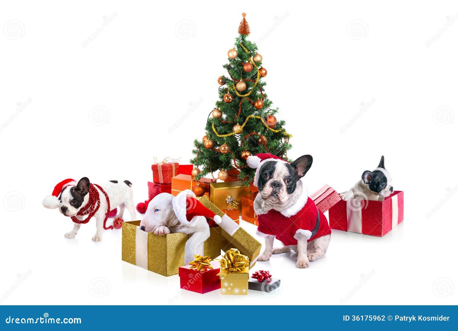 Fur Christmas Tree