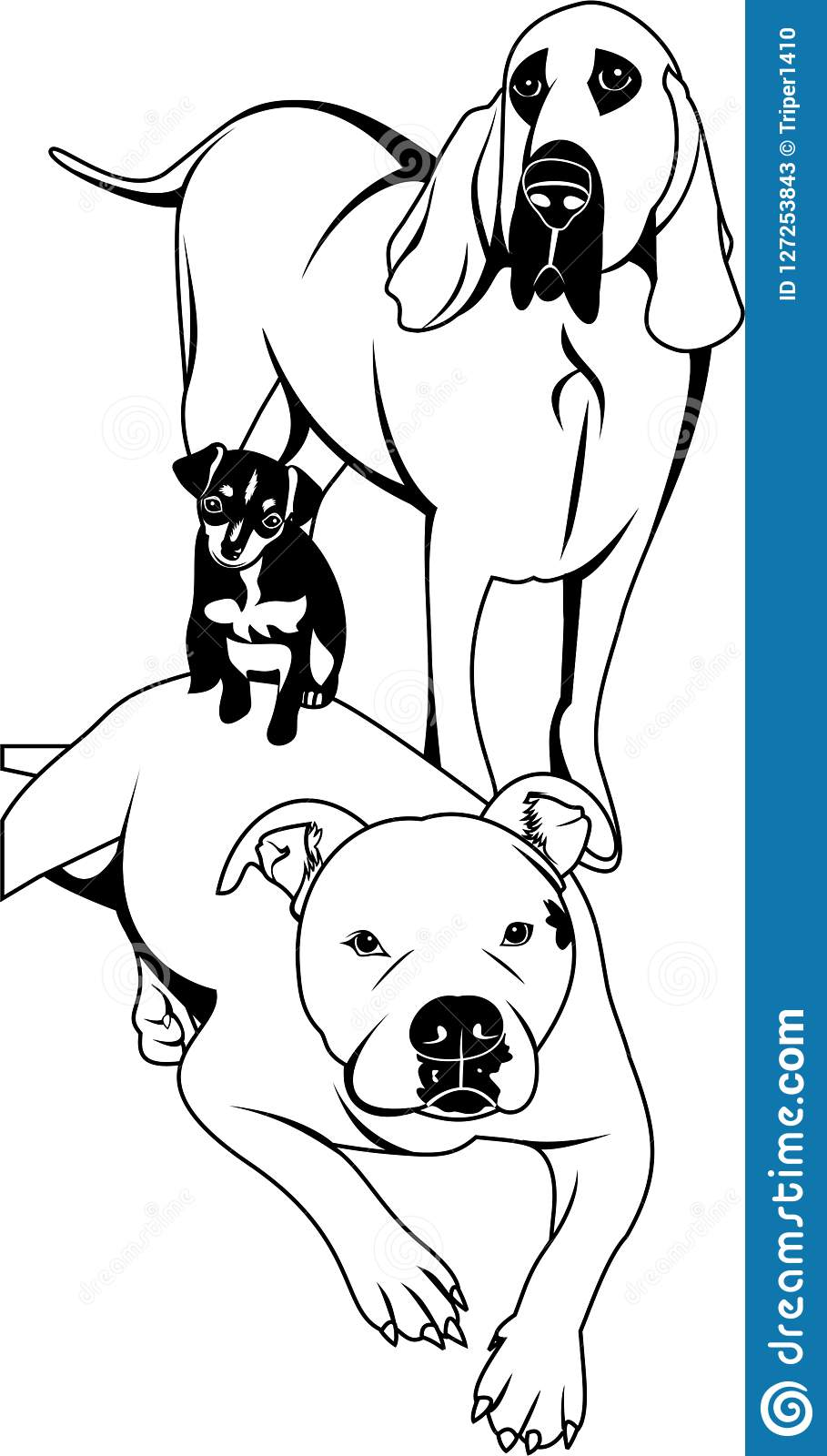 3 Dogs Vector Stock Vector Illustration Of Dogs White 127253843