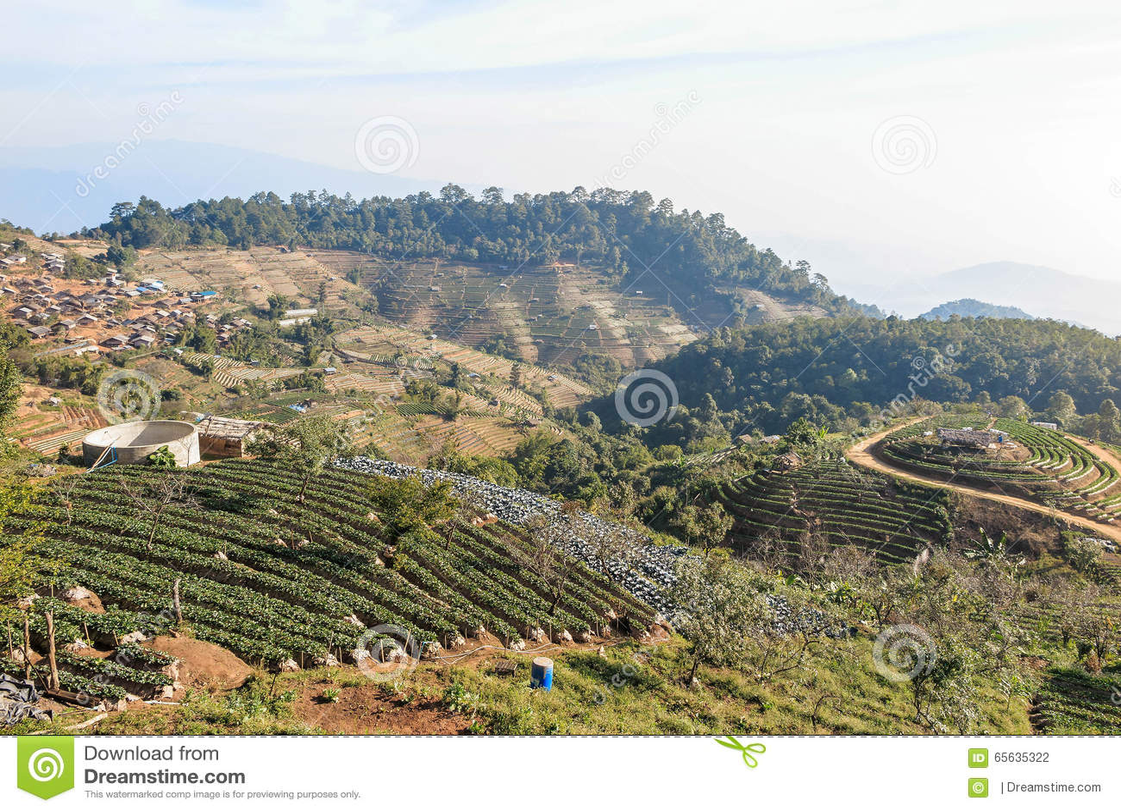 Doi Ang Khang Mountain, village et ferme