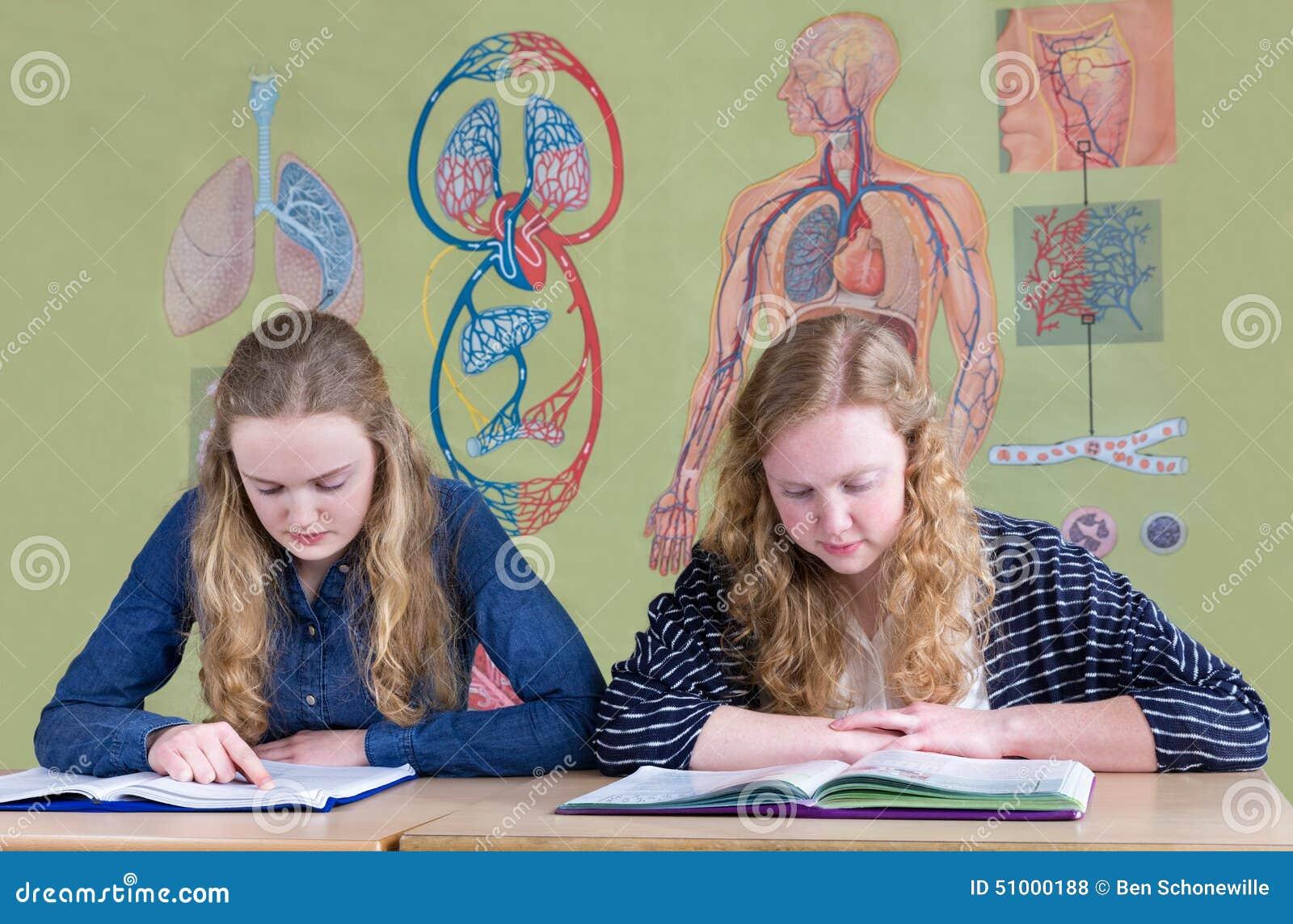 Dois adolescentes que leem livros de texto com carta da parede da biologia