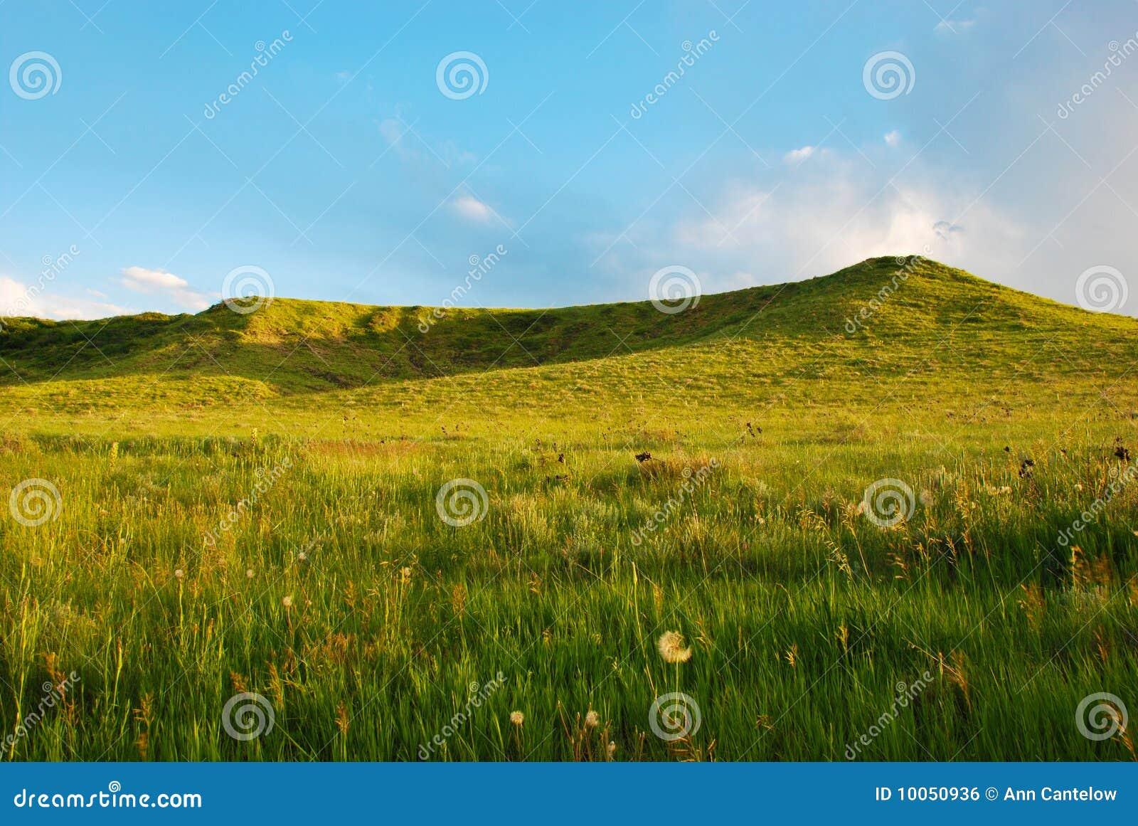 Dois baixos montes verdes no fim da tarde