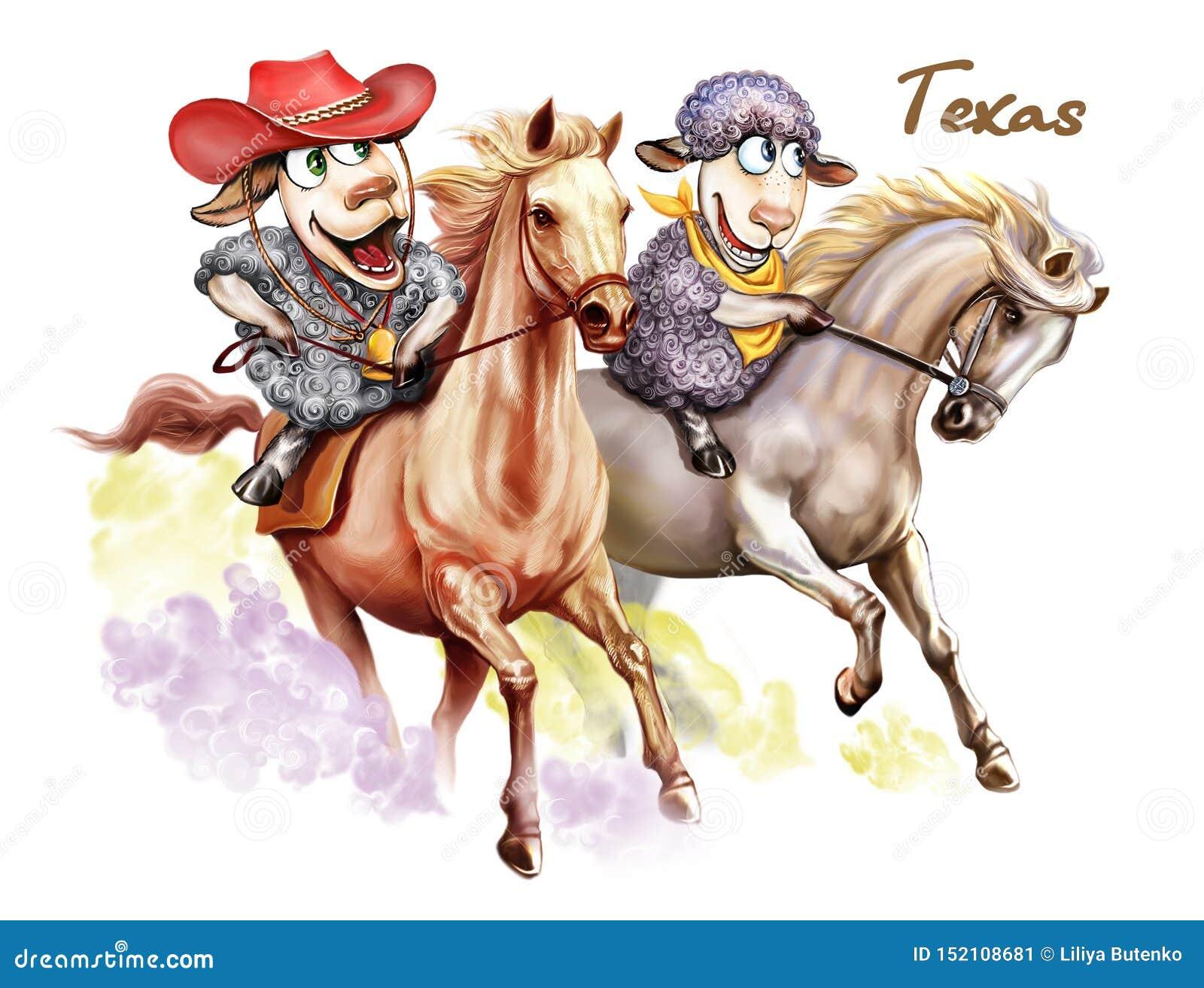 Dois carneiros estão viajando através de Texas