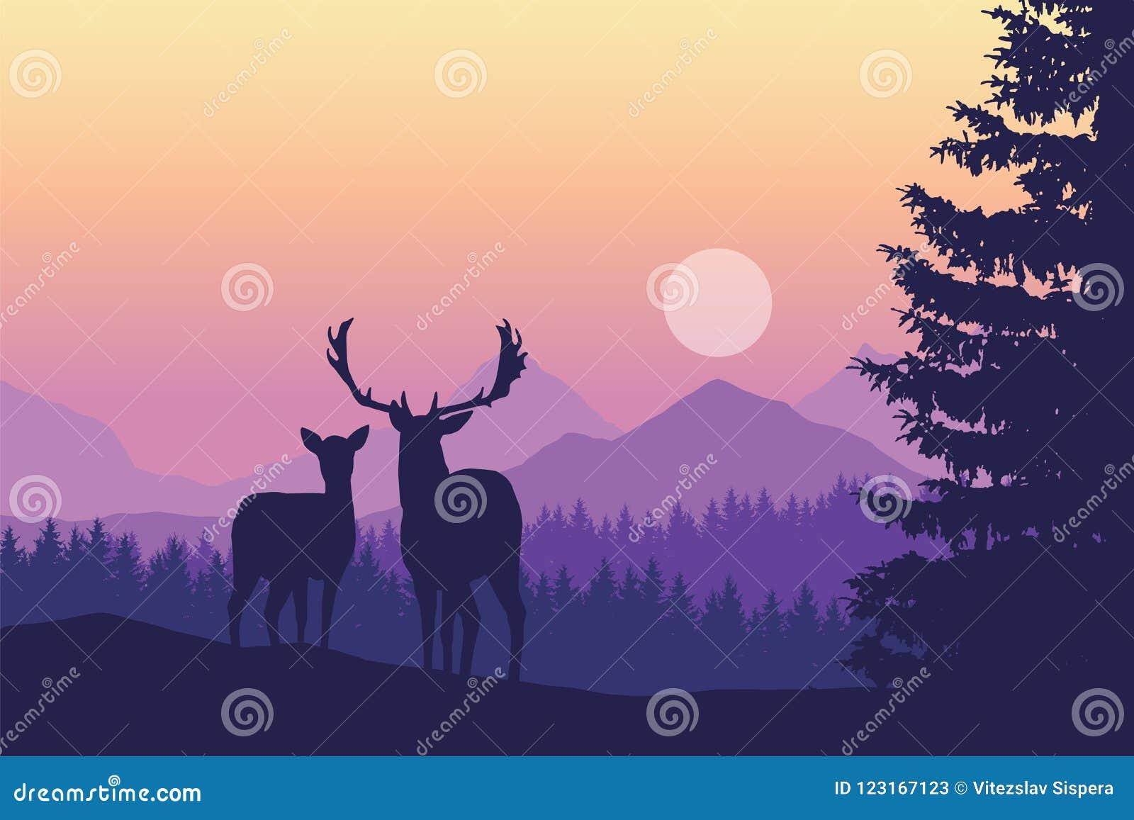 Dois cervos que estão na floresta conífera sob montanhas e yello
