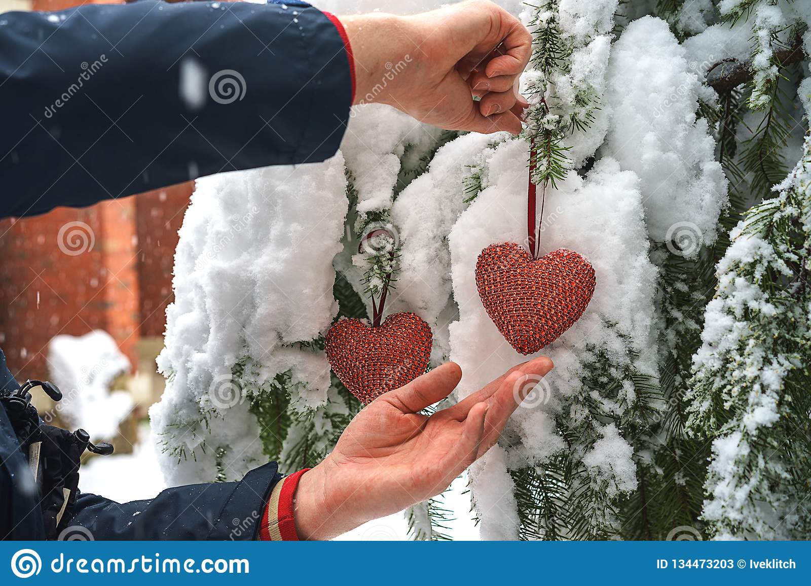 Dois corações vermelhos de matéria têxtil e mãos do homem no fundo nevado pesado do ramo do abeto, perto da casa do tijolo vermel