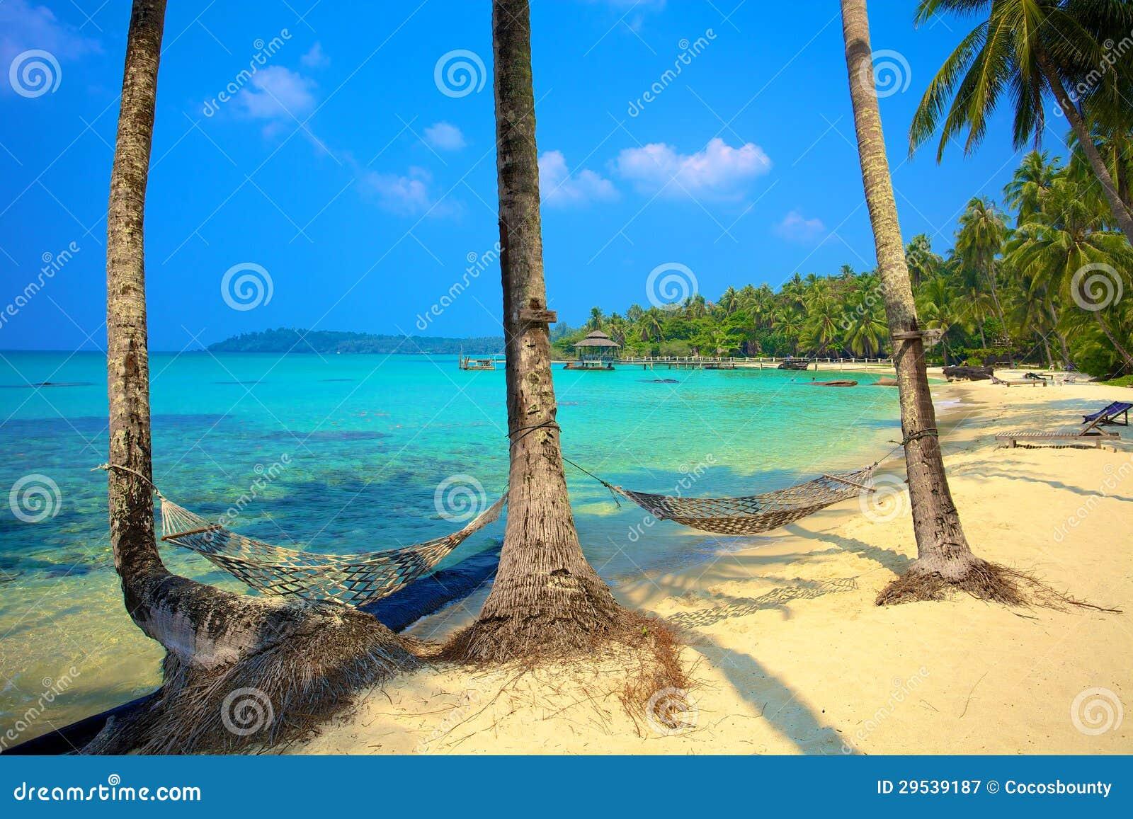 Dois hammocks em uma praia tropical