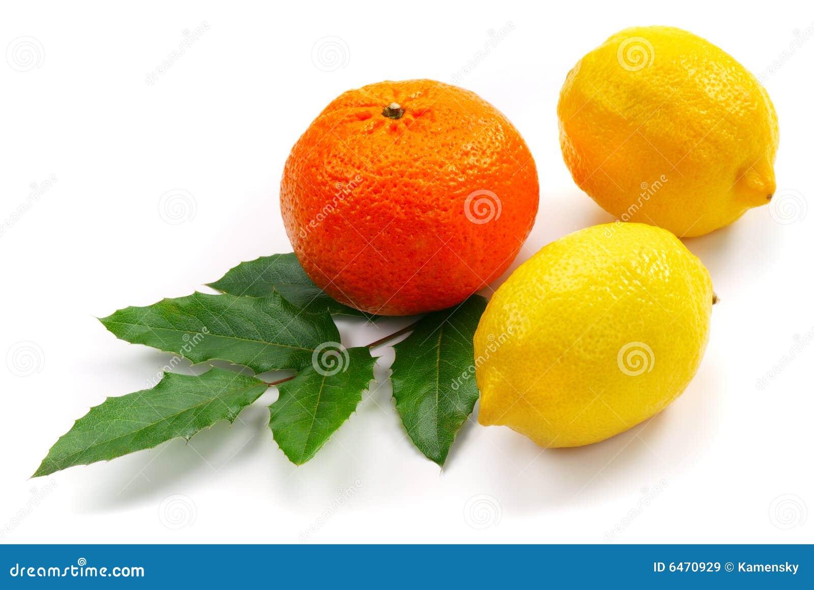 Dois limão e tangerine