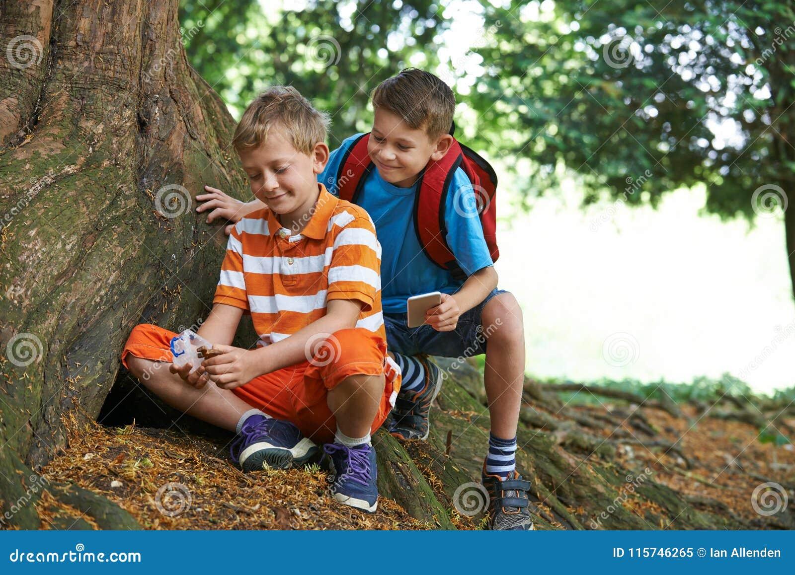 Dois meninos que encontram o artigo enquanto Geocaching na floresta
