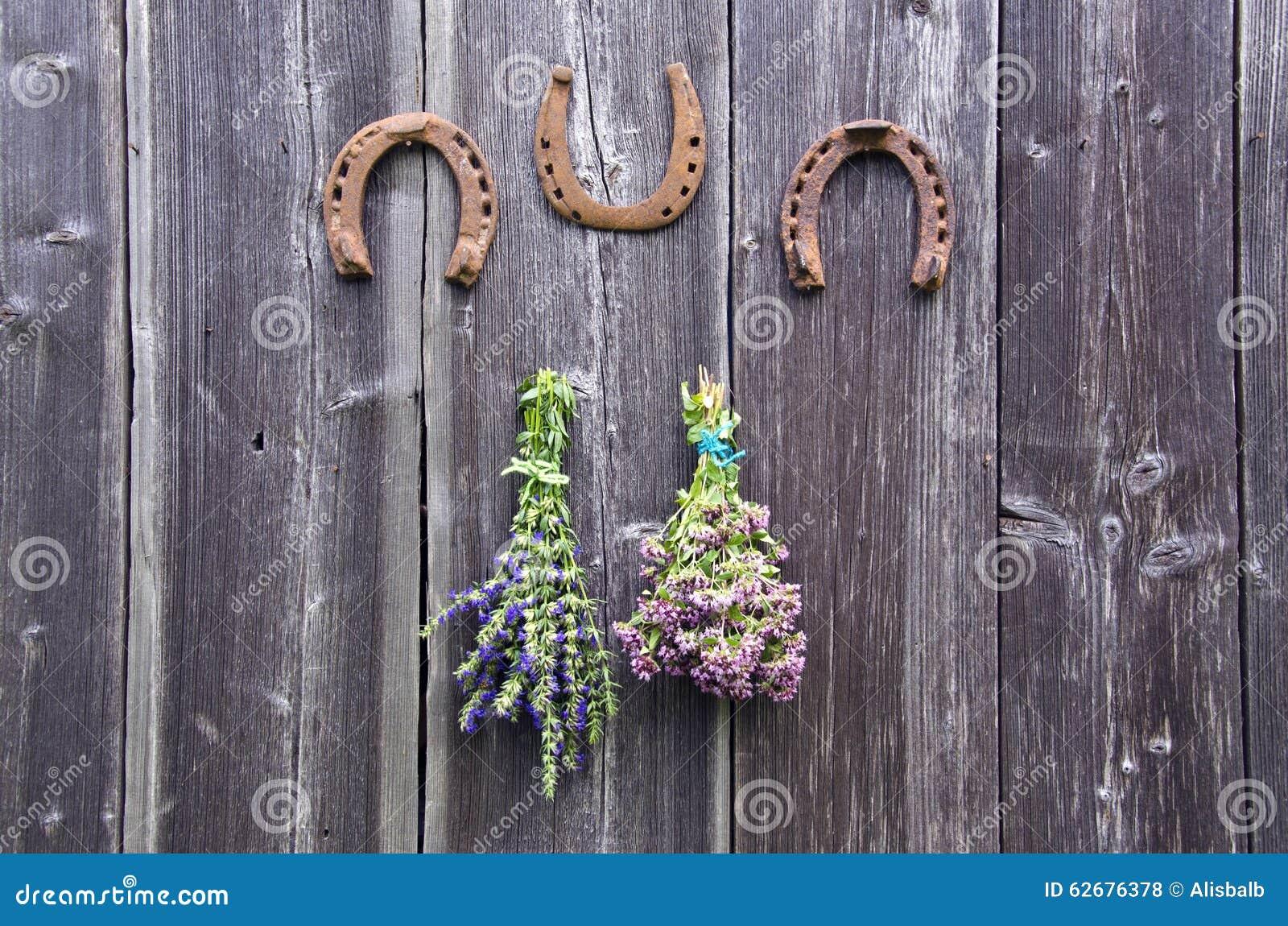 Dois pacotes de ervas dos oréganos e do hyssop e de três ferraduras na parede