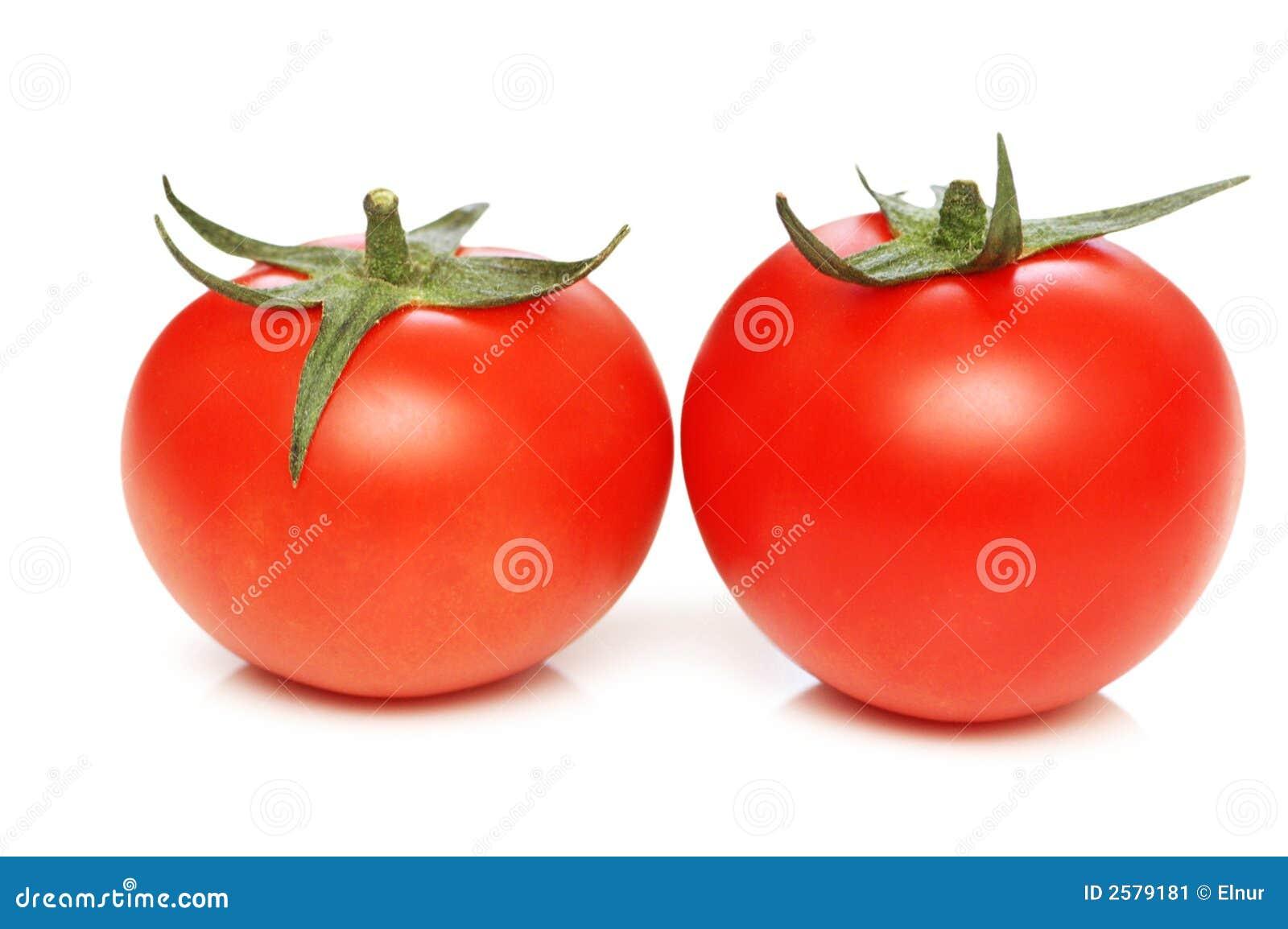 Dois tomates isolados