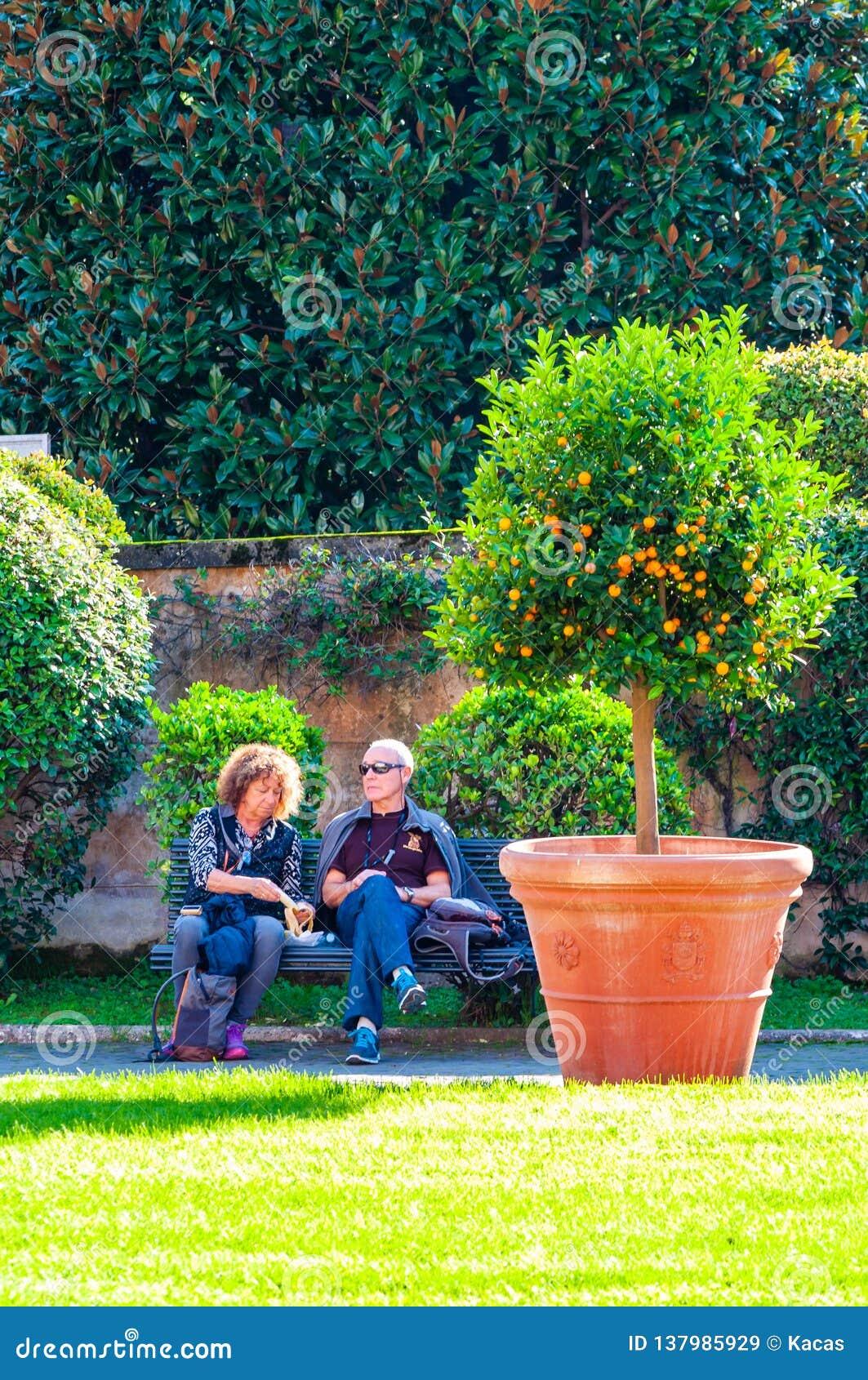 Dois turistas, homem e mulher, pares, sentando-se e descansando no banco perto da árvore de citrino no jardim quadrado no Vatican