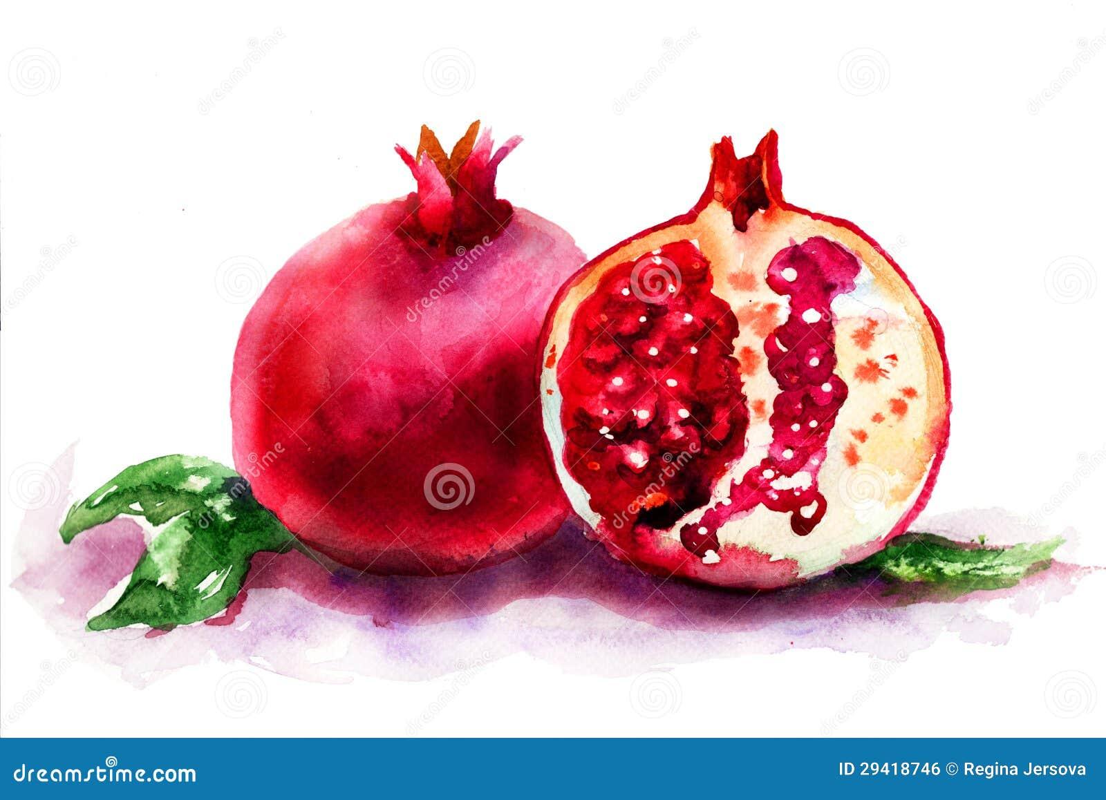 Dojrzała granatowiec owoc