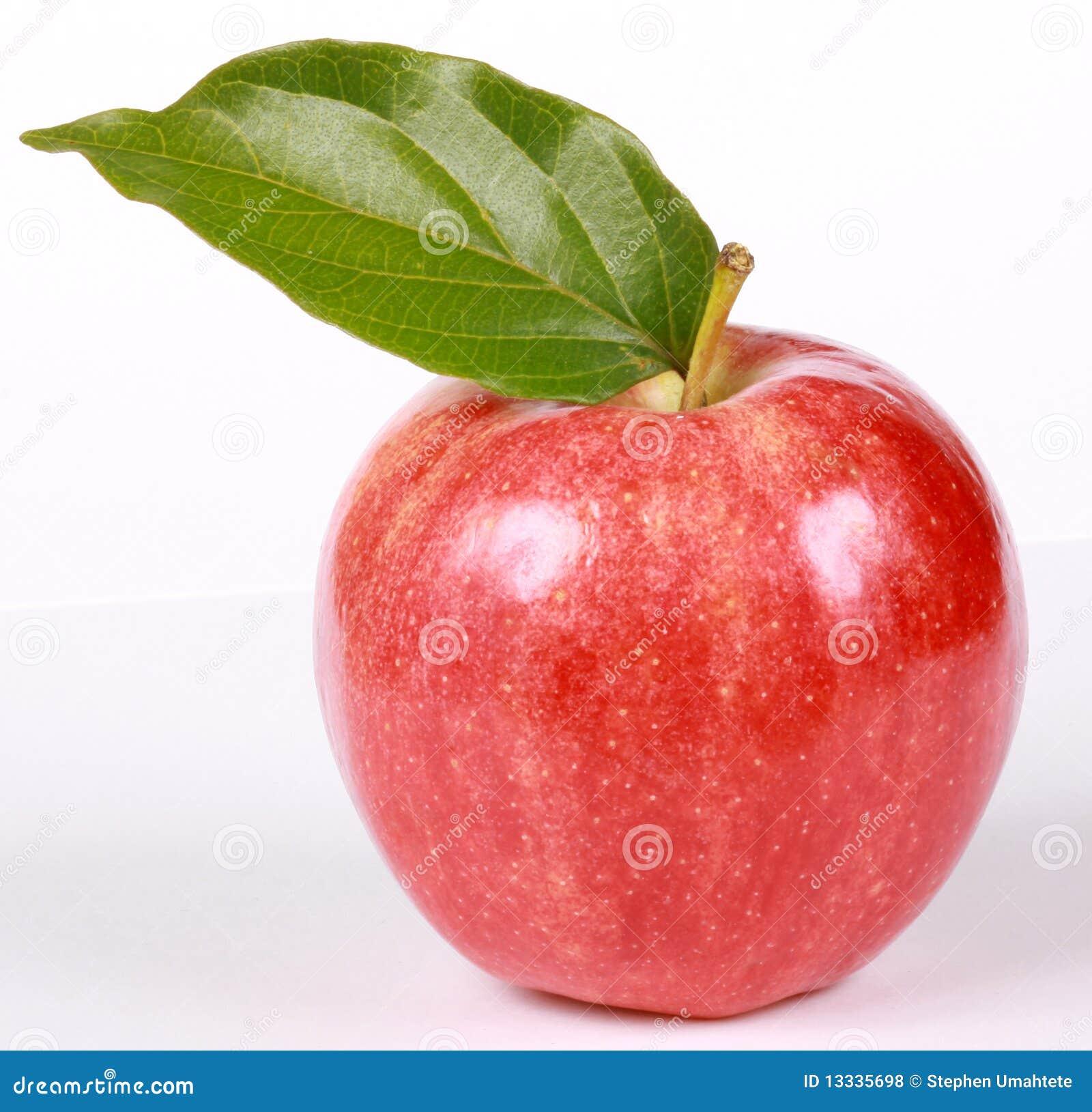 Dojrzała liść jabłczana czerwień