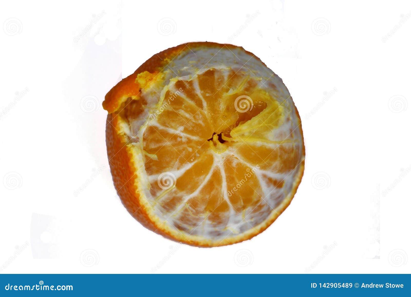 Dojrzała mandarynka w górę białej tła Tangerine pomarańcze dalej