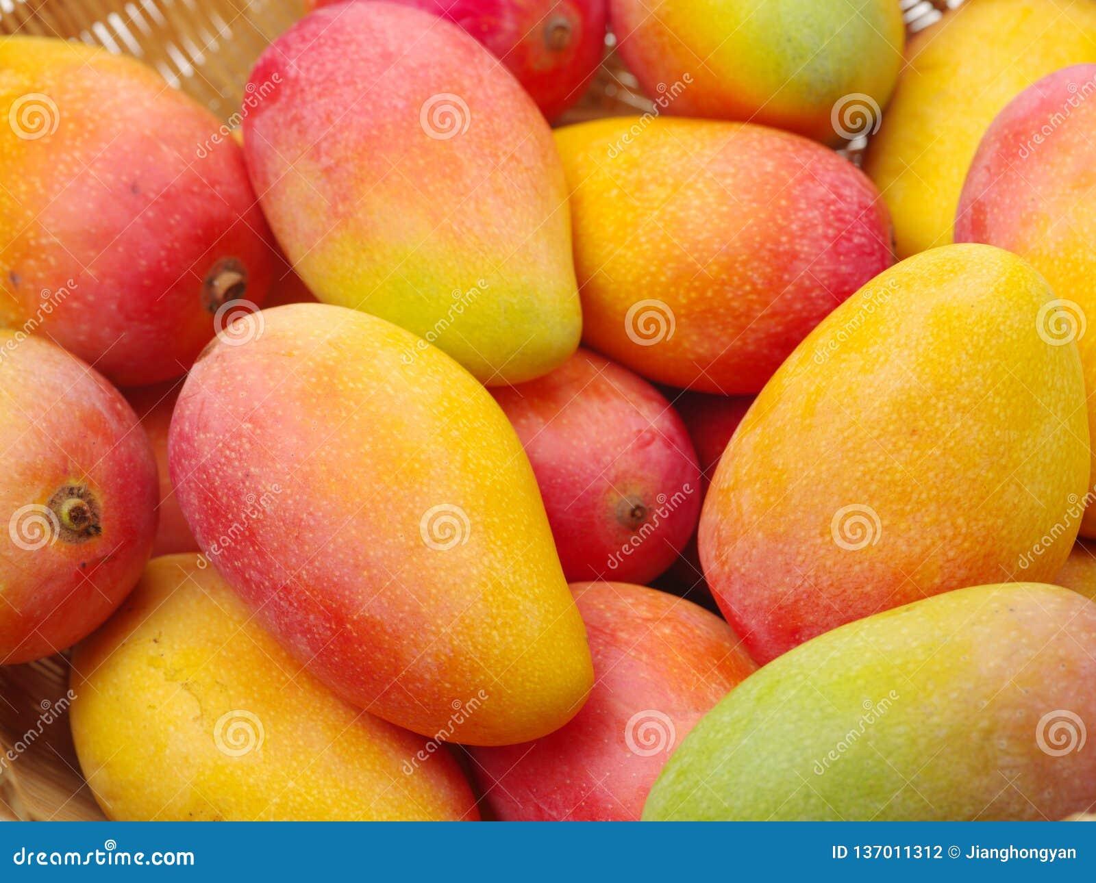 Dojrzały mango stos w koszu