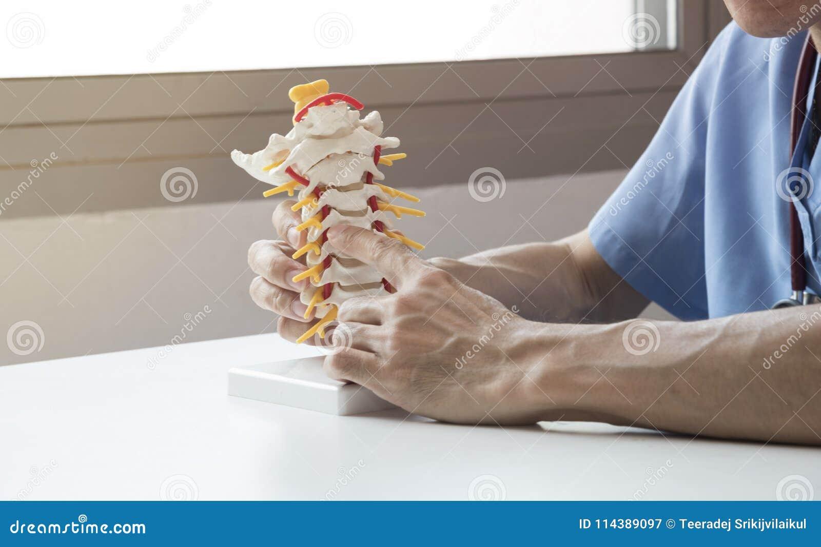 Doktor som förklarar om rygg till patienten