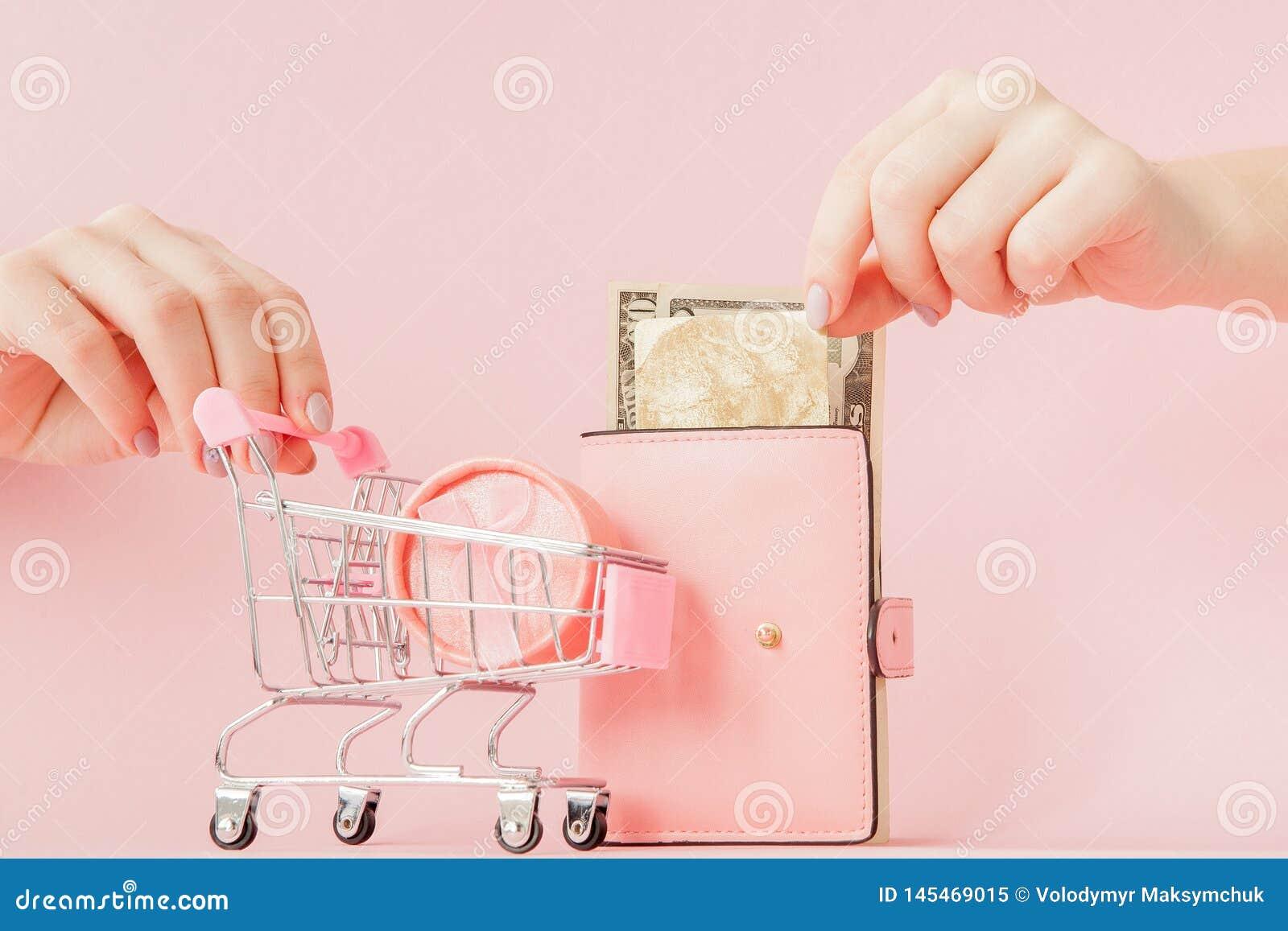 Dolary, prezenta pude?ko i menchia portfel z kart? kredytow? w kobiet r?kach na r??owym tle,