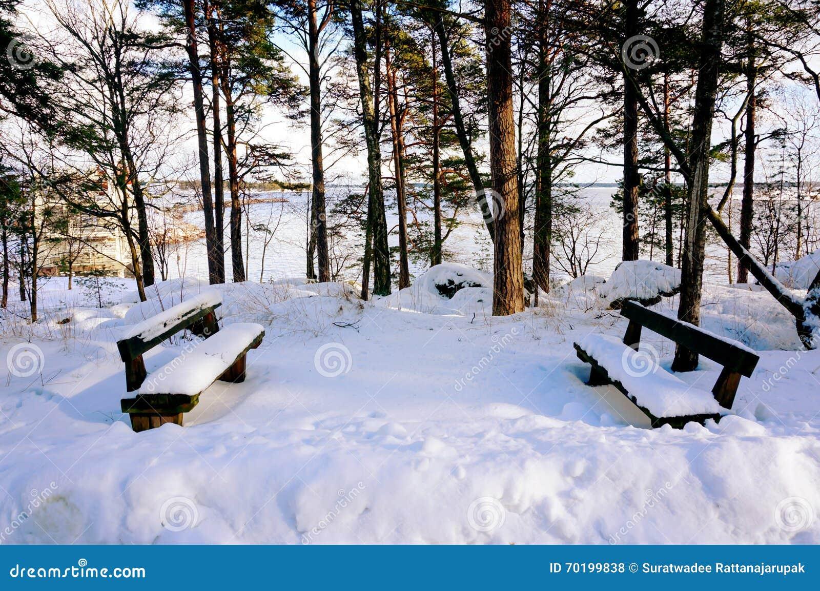 Dolda trästolar för snö nära havet