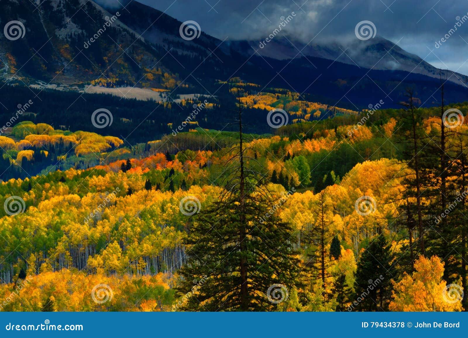 Dolina kolor