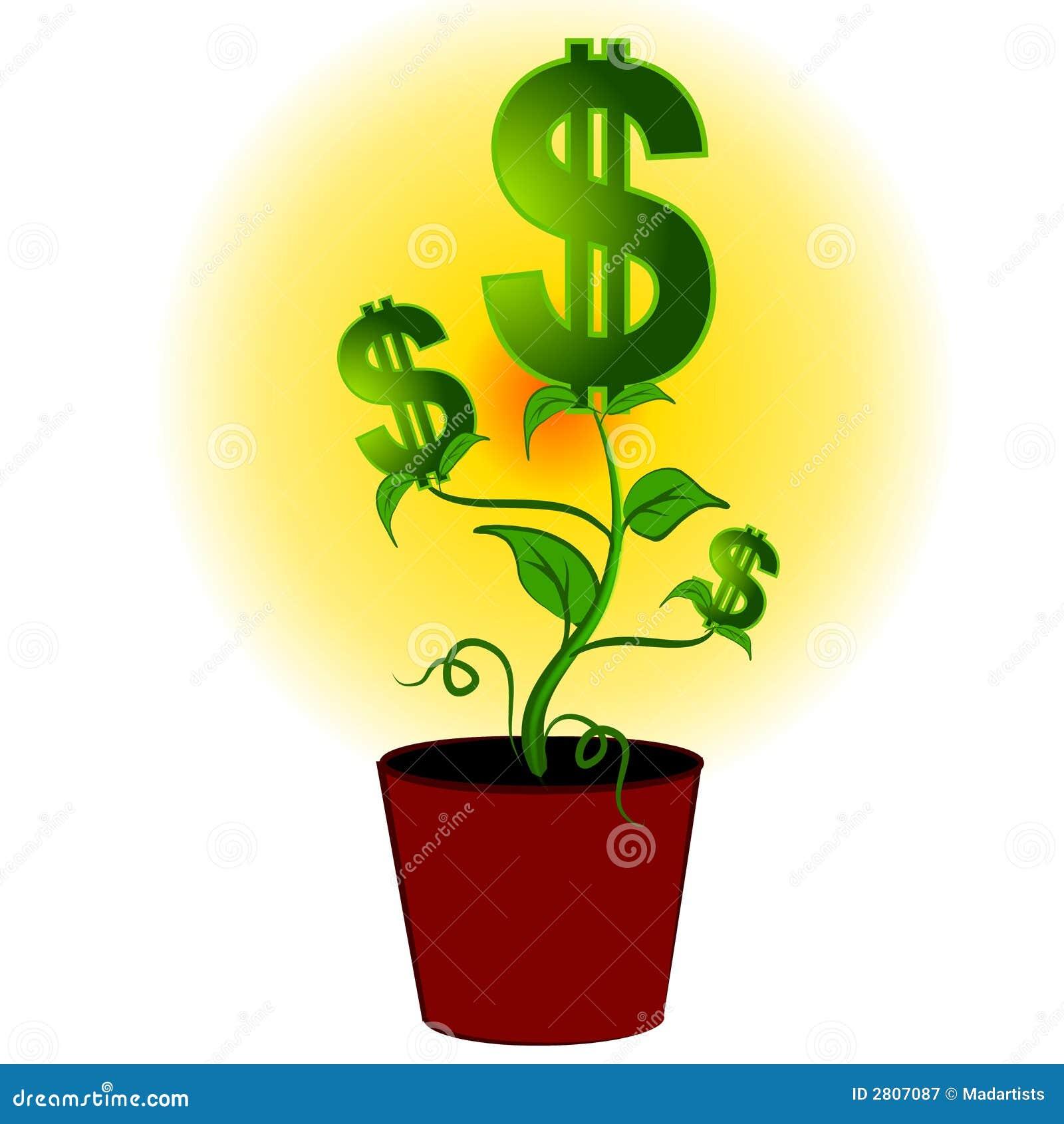 Dollar Signs Money Plant Tree