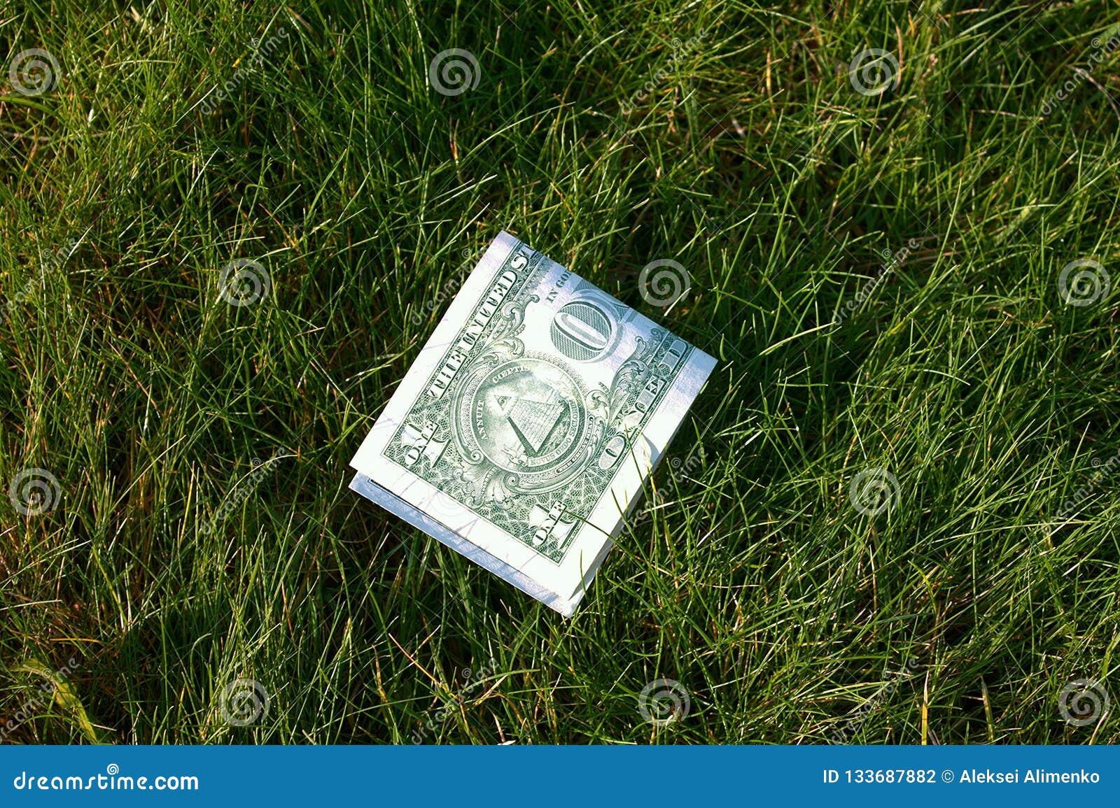 Dollar vert plié dans la moitié sur l herbe verte