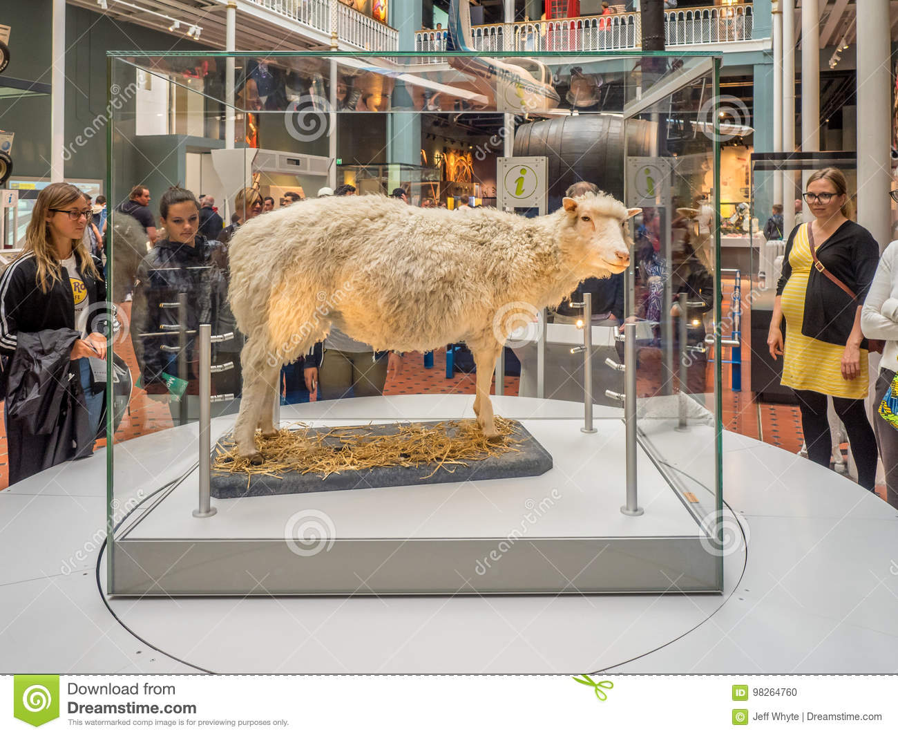 Dolly, National Museum of Scotland in Edinburgh