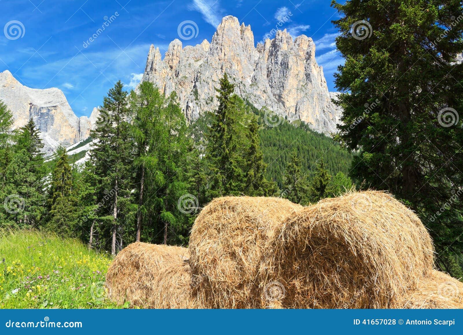 Dolomiti - высокогорный выгон
