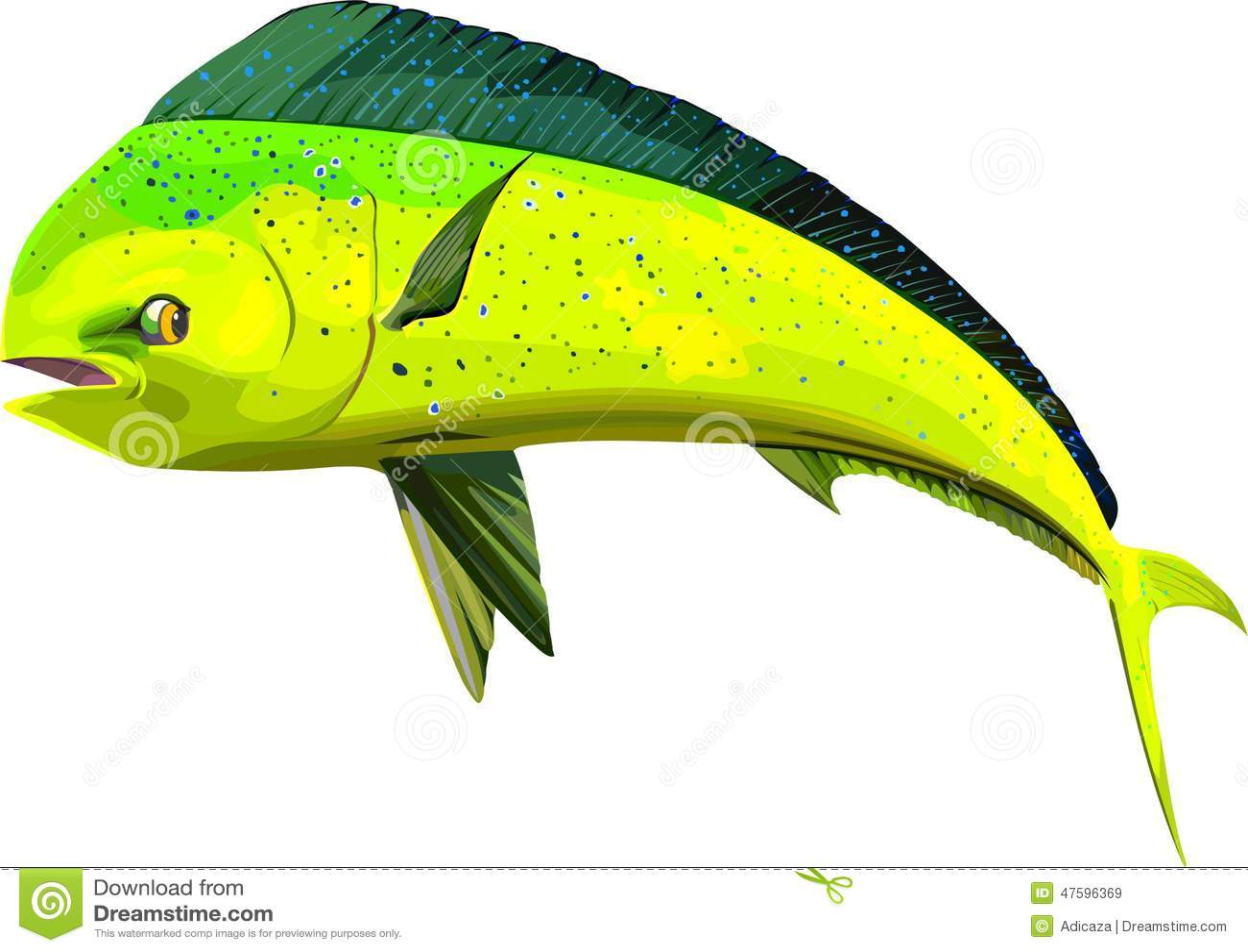 Dolphin Stock Illustrations – 12,074 Dolphin Stock Illustrations ...