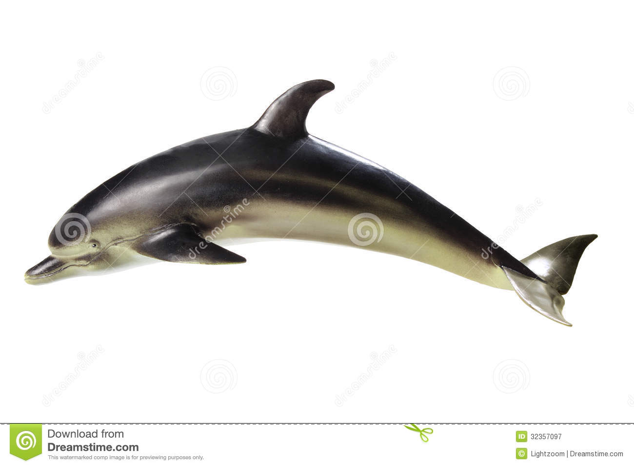 Dolphin Royalty Free Stock Photography - Image: 32357097