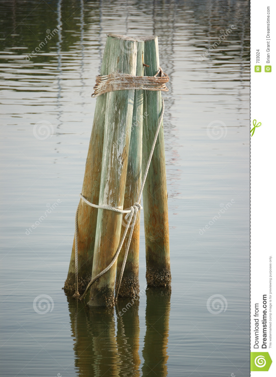 Dolphin pilings stock images image 703024 for Dock pilings cost
