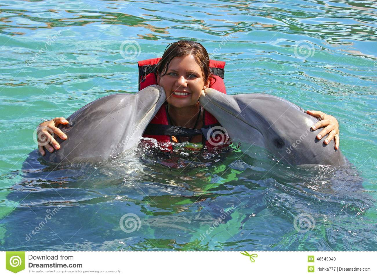 Dolphins Kissing Young Girl, Cuba Stock Photo - Image