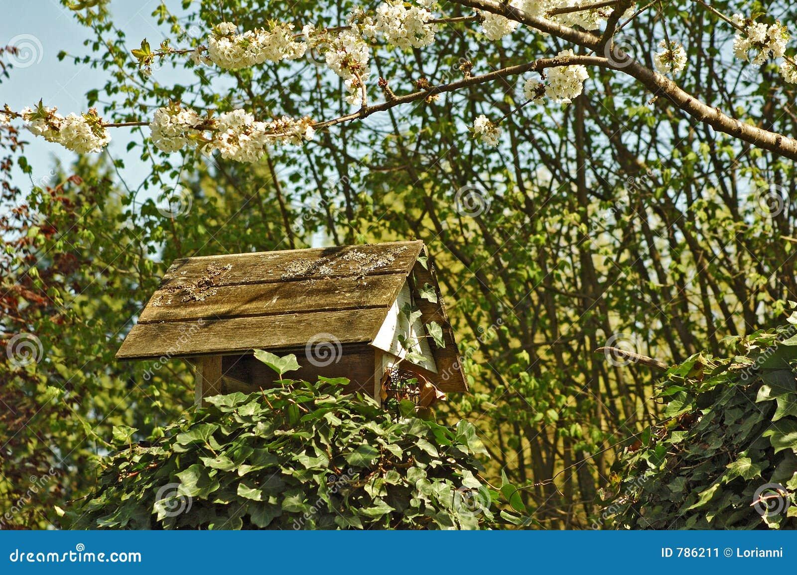Dom dozownika ptaka
