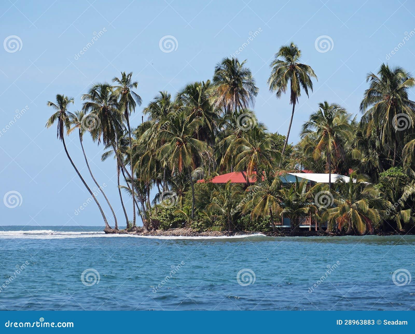 Dom morzem z kokosowymi drzewkami palmowymi