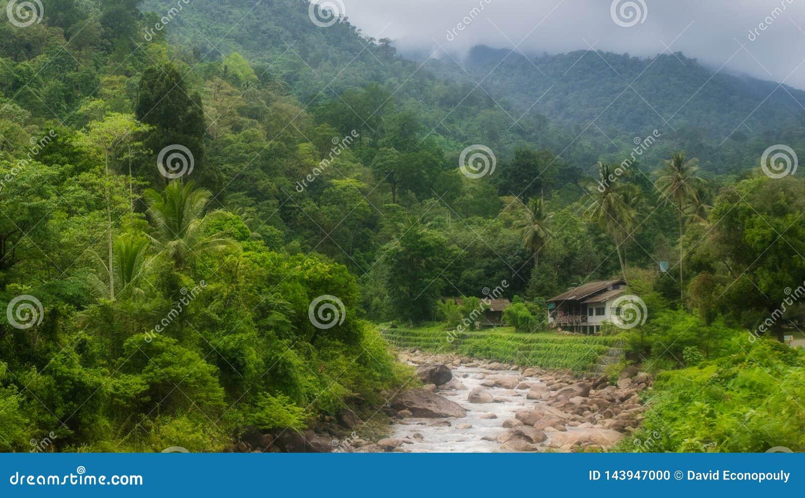Dom na rzece w Kiriwong