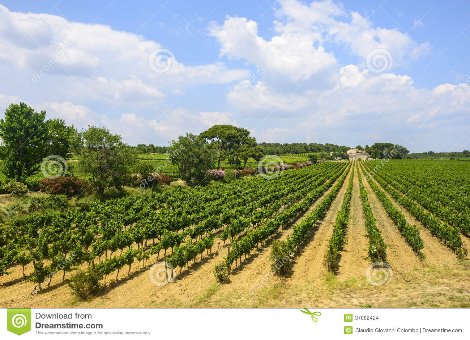 Download Dom Na Wsi Blisko Montpellier Zdjęcie Stock - Obraz złożonej z pogodny, farm: 37082424