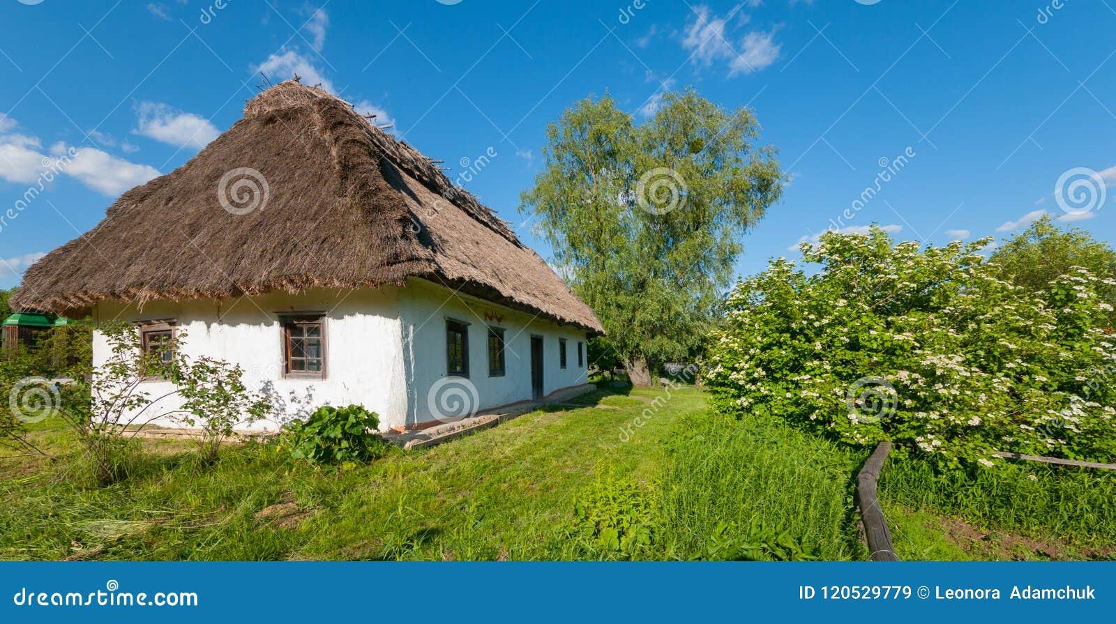 Dom pod pokrywającym strzechą dachem z biel ścianami w wsi przeciw niebieskiemu niebu