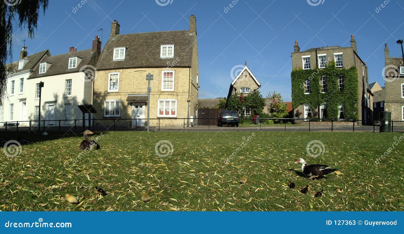 Download Dom starego ely obraz stock. Obraz złożonej z britain, lato - 127363