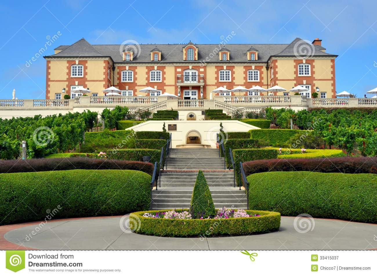 Domaine Carneros Vineyard Napa Valley Royalty Free Stock